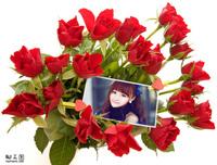 大束玫瑰花照片合成