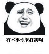 熊猫头表情换脸加字