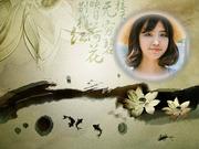 水墨荷花中国风照片合成