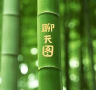在竹子上写字表白图片制作